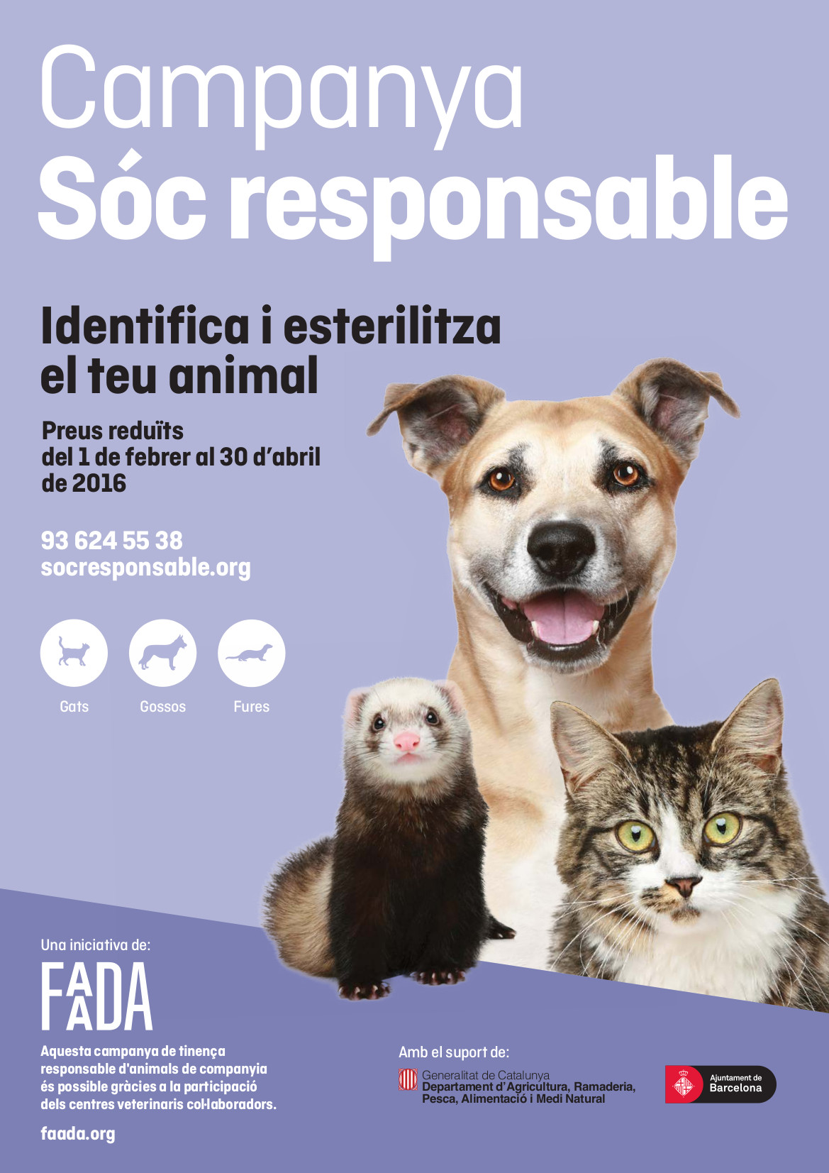 FAADA-SR16-cartel-A3-CAT